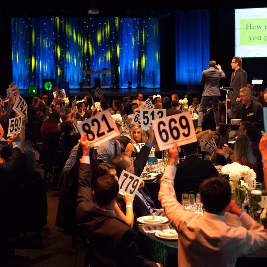 auction paddles being raised at large gala fundraiser event